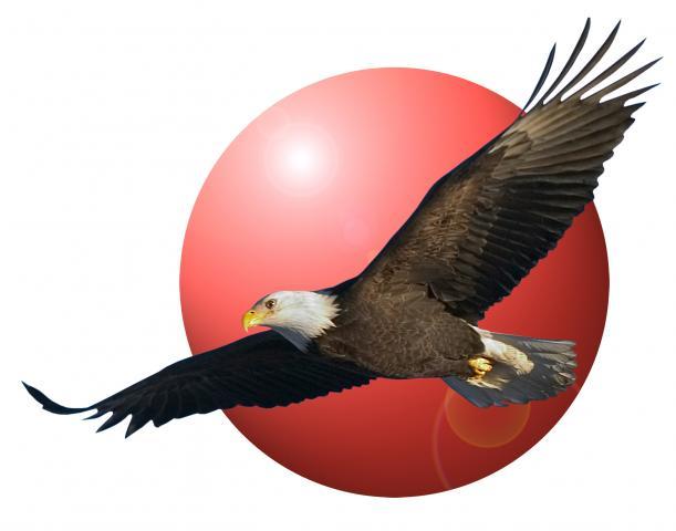 mainair_logo.jpg